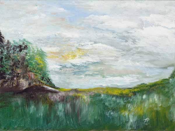 Grassy Field - $2000