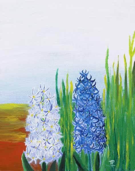Hyacinth - $500